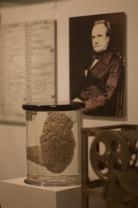 Charles Babbage and his brain