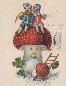The Christmas Mushroom - Amanita Muscaria